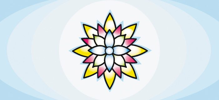 mindfulness-principios-basicos