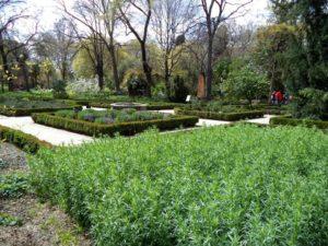 Visita guiada a los jardines de La Granja de San Ildefonso (Segovia) @ La Granja de San Ildefonso | La Granja de San Ildefonso | Castilla y León | España